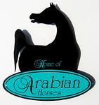 Zuhra-Arabians' photo